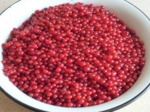 желе на зиму из красной смородины