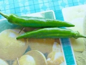 лучшие сорта перца для выращивания в открытом грунте 1