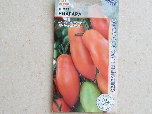 лучшие сорта помидор Томат Ниагара