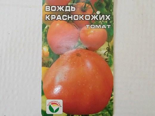 лучшие сорта помидор Томат Вождь краснокожих