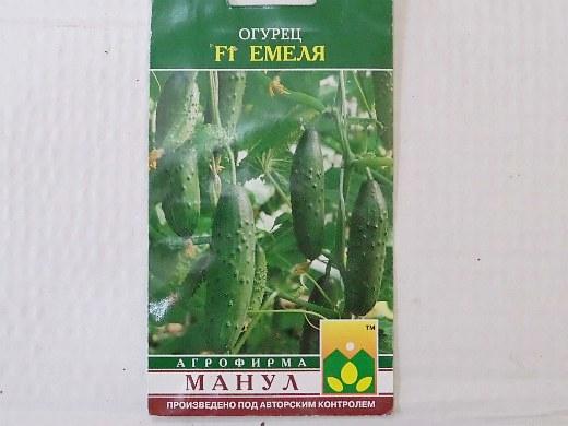 лучшие сорта огурцов емеля f1