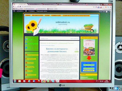 бизнес в интернете - домашний бизнес 1-1
