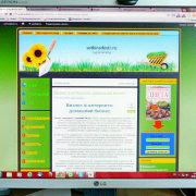 бизнес в интернете - домашний бизнес 1-2