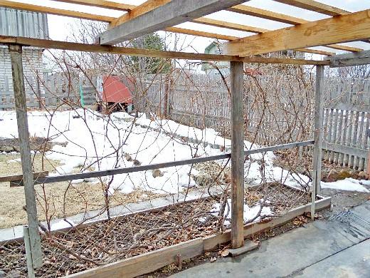 пергола садовая для винограда 1-5