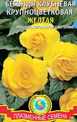 семена бегония клубневая крупноцветковая желтая