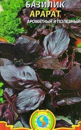базилик выращивание, польза - сорт арарат