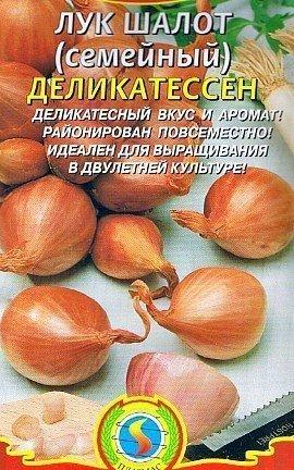 лук-шалот выращивание - сорт деликатессен