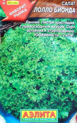 салат-латук, выращивание на даче - сорт лолло бионда