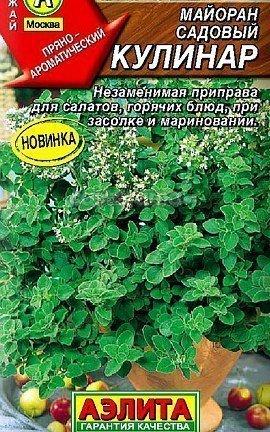 садовый майоран, выращивание - семена сорт кулинар