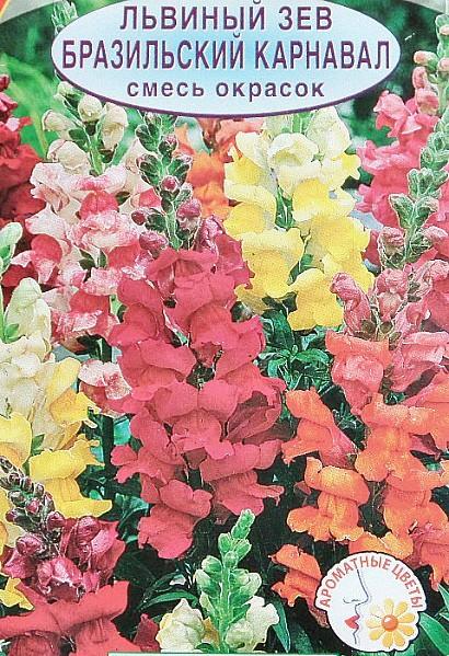 цветы львиный зев семена сорт бразильский карнавал