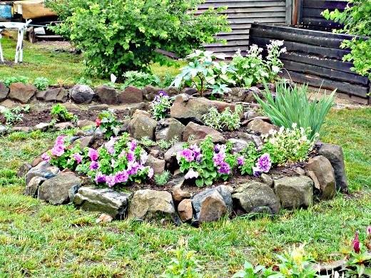 цветы на даче фото альпийской горки