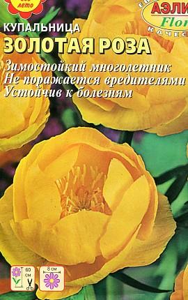 цветы годеция, выращивание - семена сорт золотая роза