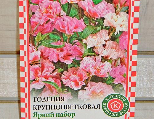 цветы годеция, выращивание - семена годеция крупноцветковая яркий набор