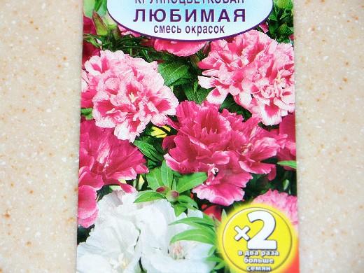 цветы годеция, выращивание - семена сорт любимая