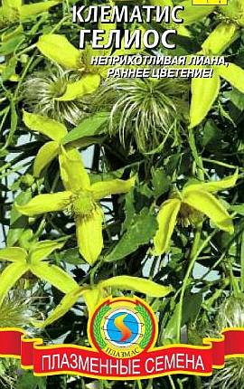 семена клематис сорт гелиос