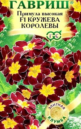 примула высокая садовая многолетняя, семена f1 сорт кружева королевы