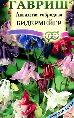 Цветы водосбор, выращивание из семян