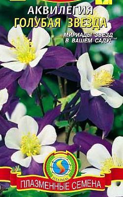 цветы водосбор, выращивание из семян, аквилегия сорт голубая звезда