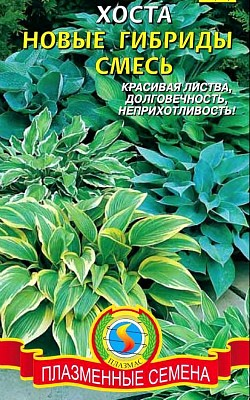 цветок хоста, посадка и уход, семена новые гибриды смесь