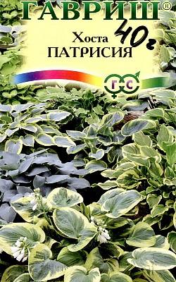 цветок хоста, посадка и уход, семена сорт патрисия
