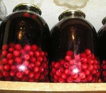 Рецепт компота на зиму из вишни