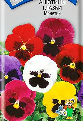 цветы анютины глазки, выращивание - семена сорт монетки