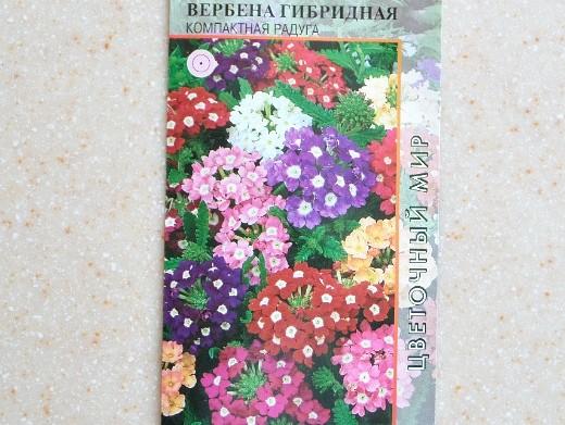 вербена, посадка и уход - семена f1 гибридная сорт компактная радуга