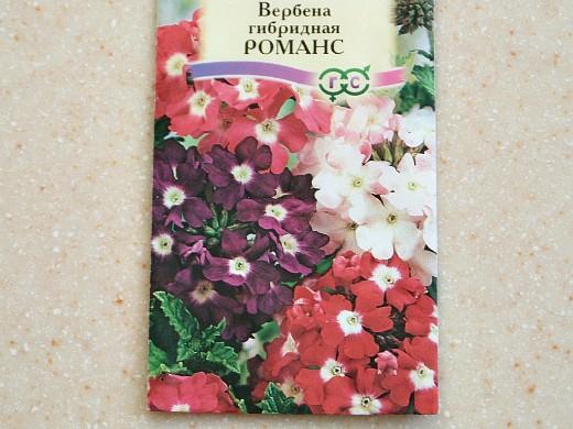 вербена, посадка и уход - семена гибридная f1 сорт романс
