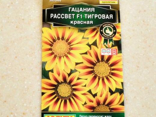 гацания, выращивание из семян 4