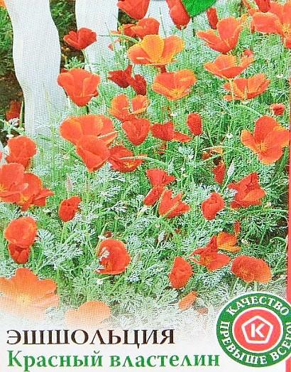 эшшольция, посадка и уход - семена сорт красный властелин