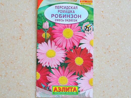 ромашки, посадка и уход - семена персидская сорт робинзон, смесь