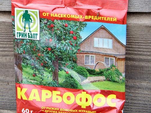 вредители гладиолусов - препарат карбофос