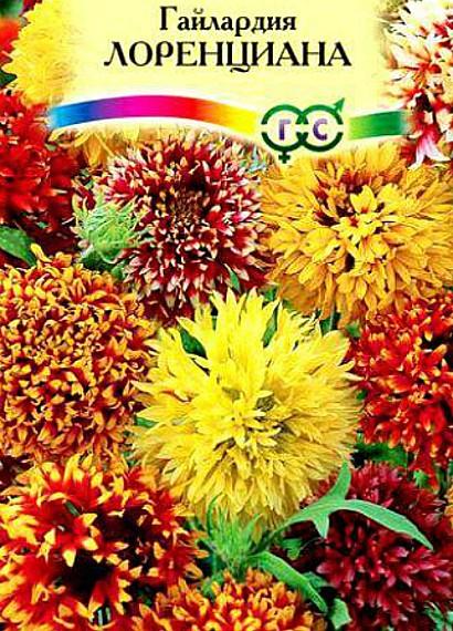 гайлардия многолетняя, посадка и уход - семена сорт лоренциана
