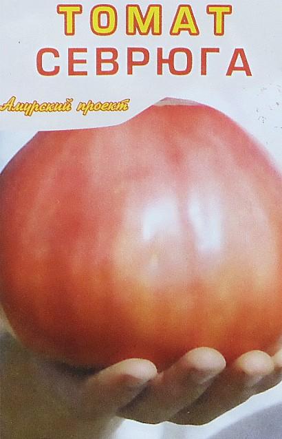 лучшие сорта томатов для открытого грунта - севрюга