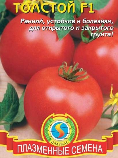 лучшие сорта томатов устойчивых к заболеваниям и неблагоприятным погодным условиям - толстой f1