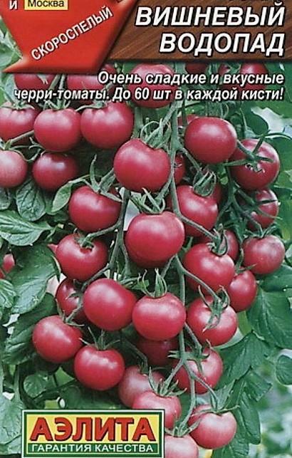 лучшие сорта томатов для открытого грунта - вишневый водопад