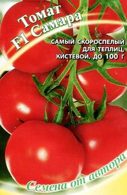 лучшие сорта томатов для теплиц - самара f1