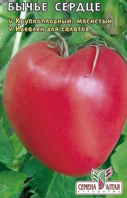 лучшие сорта томатов для теплиц - бычье сердце