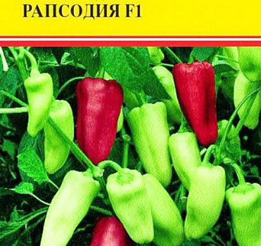 лучшие сорта перцев для теплиц - рапсодия f1