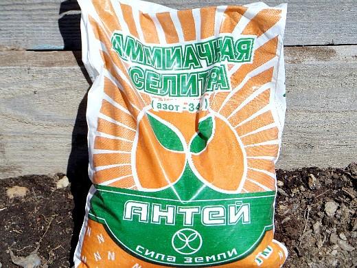 чем подкармливать растения - удобрения, аммиачная селитра