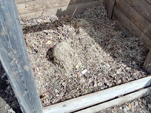 чем подкармливать растения - удобрения, ящик для компоста