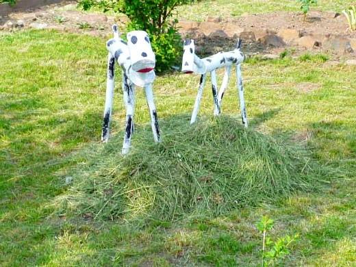 какой выбрать газон сеянный или рулонный 2