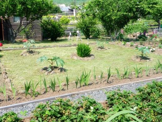 календарь работ в саду и огороде летом 4