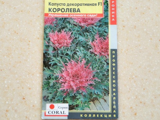 декоративная капуста, выращивание и уход - семена сорт f1 королева