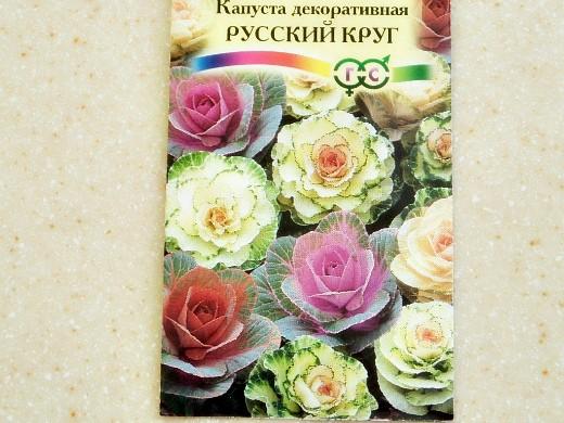 декоративная капуста, выращивание и уход - семена сорт русский круг