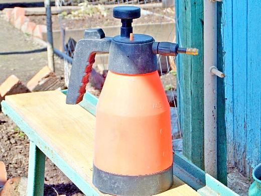 бордоская жидкость - приготовление, обработка - опрыскиватель