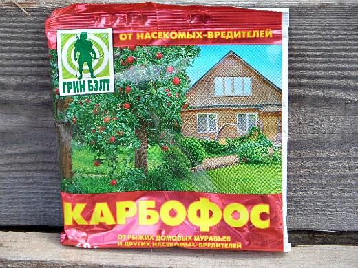 обработка кустов смородины и крыжовника карбофосом