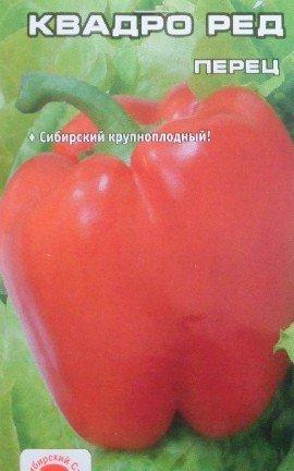 посадка и выращивание перцев в теплице - семена сорт квадро ред