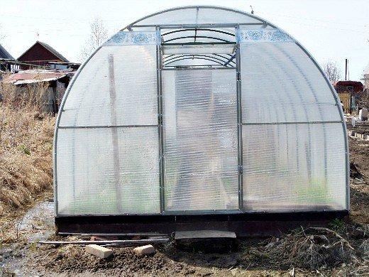 выращивание огурцов в теплице из поликарбоната, вид осенью