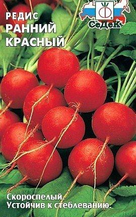 выращивание редиса в теплице - семена сорт ранний красный